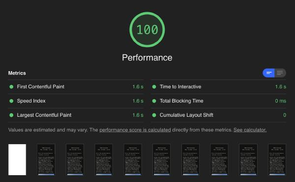 Google Lighthouse Score showing a 100 for Performance